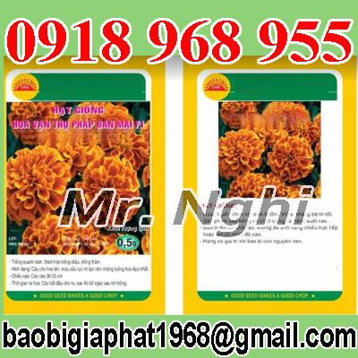 In túi hạt giống| baobigiaphat.vn